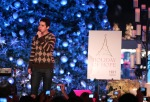david-tree-lighting-22